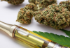 Learn in Vape pen how hemp oil makes a difference over others