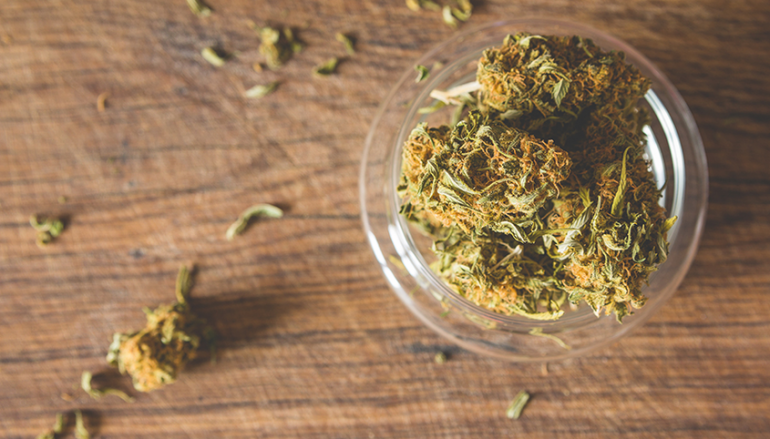 Buy Weed Online Canada is the Tricky Subject but Easy